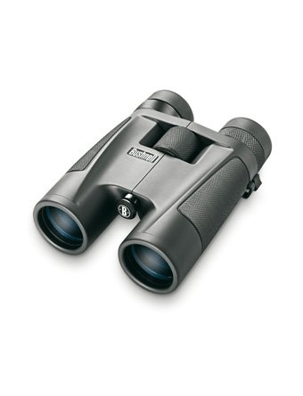 Bushnell Fernglas Powerview 8-16x40