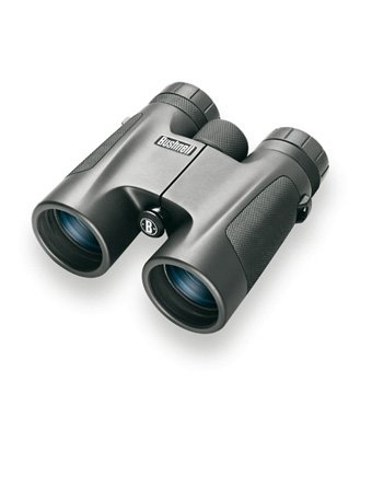 Bushnell Fernglas Powerview 8x32